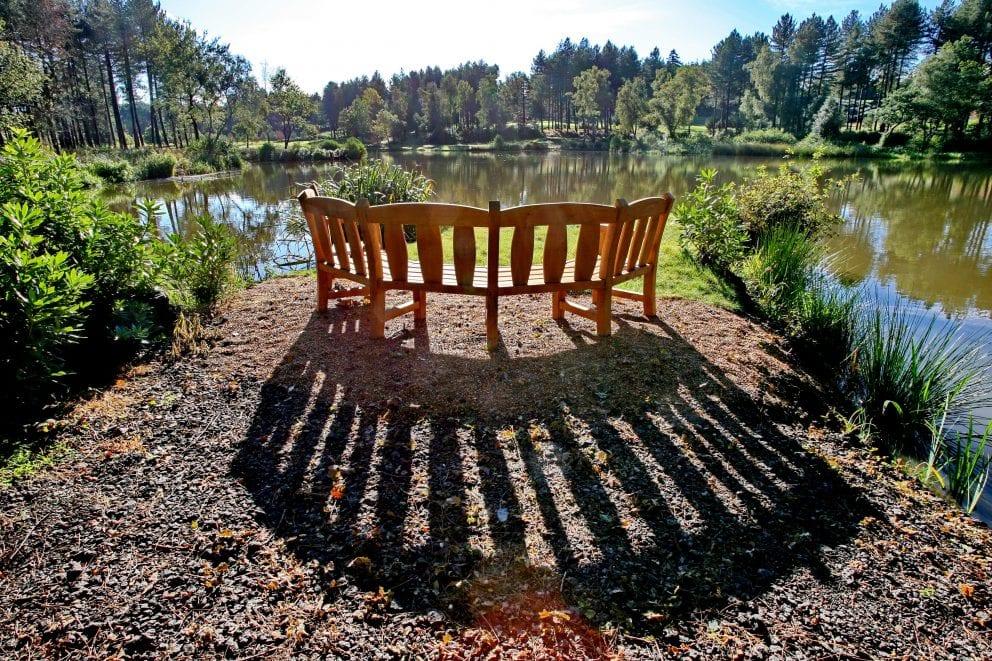 wedding bench
